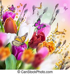 ヤナギ, チューリップ, butterflies., 多彩