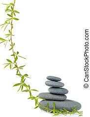 ヤナギ, 小石, 木の枝
