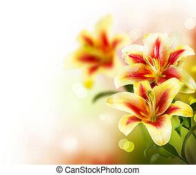 ユリ, 花, ボーダー, 春, design.