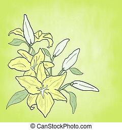 ユリ, 花, 春, 主題, 緑の背景