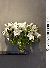 ユリ, 花, 白い背景, つぼ
