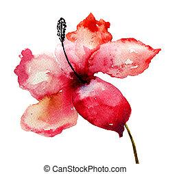 ユリ, 花, 美しい