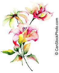 ユリ, camomile, 装飾用である, 花