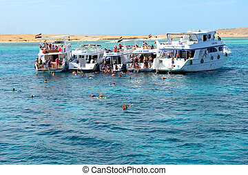 ヨット, -, 観光客, それ, 12月, エジプト, モーター, 6, hurghada, snorkeling, sea., 人気が高い, 赤, 2012, 6:, 目的地
