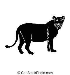 ライオン, シルエット, 隔離された
