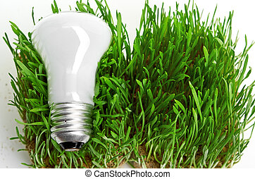 ライト, エネルギー,  symbolizing, 緑, 電球, 草