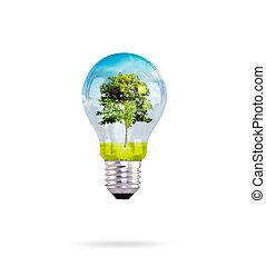ライト, 中, 木, 電球