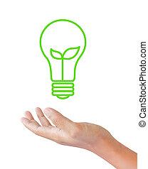 ライト, 中, 芽, 電球, 手