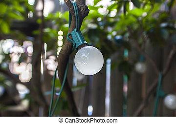 ライト, 庭, 電球