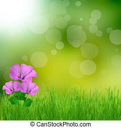 ライト, 抽象的, bokeh, 緑の背景, 花