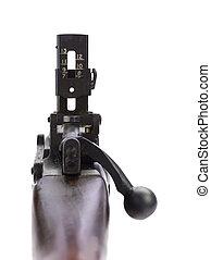 ライフル銃, 範囲