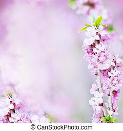 ライラック, 花, 抽象的, ぼやけた背景, 花, 花