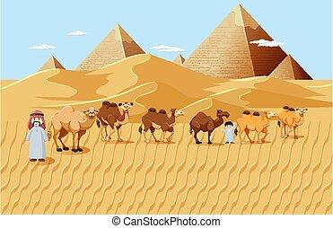 ラクダ, 砂漠, 背景, 風景, ピラミッド, 現場