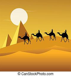 ラクダ, 砂漠, 観光客