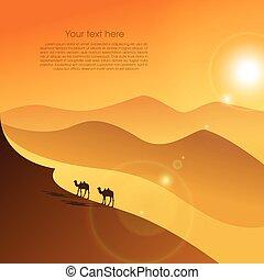 ラクダ, 砂漠, 2
