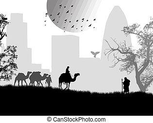 ラクダ, bedouins