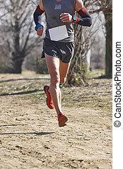 ランナー, 健康, 練習, 国, race., マレ, 交差点