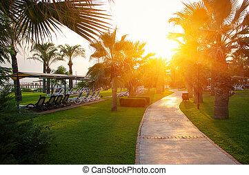 リゾートホテル, 浜