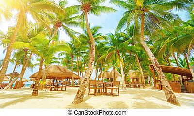 リゾート, 浜, playa del カーメン