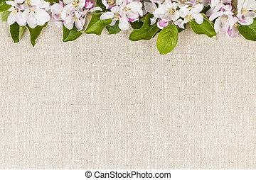 リンネル, 背景, アップル, 花