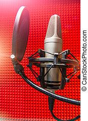 レコーディングスタジオ, マイクロフォン