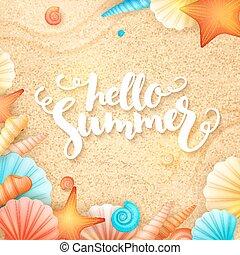 レタリング, 殻, テキスト, -, 手, 砂, ベクトル, 夏, 背景, こんにちは