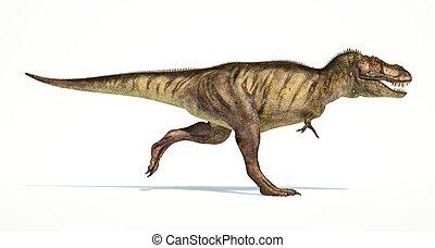 レックス, photorealistic, tyrannosaurus, 恐竜, 側, representation.