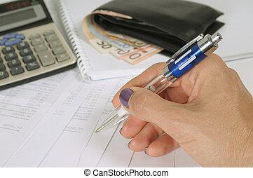 レポート, 財政