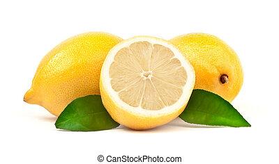 レモン, ∥で∥, 緑の葉