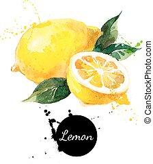 レモン, 手, 水彩画, 背景, 引かれる, 白, 絵
