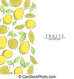 レモン, 熟した, イラスト