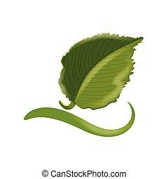 ロゴ, 生態学的, 葉