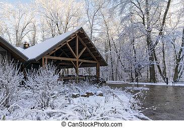 ロッジ, 冬, 雪が多い