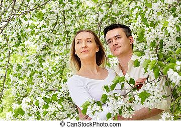 ロマンス語, 春