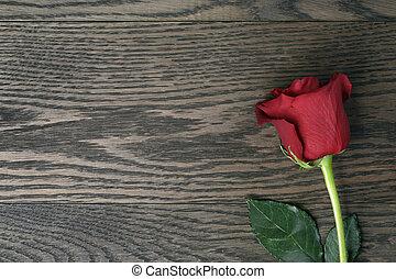 ロマンチック, バラ, 木, 背景, テーブル, 赤, の上
