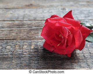 ロマンチック, バラ, 木, 背景, テーブル, 赤