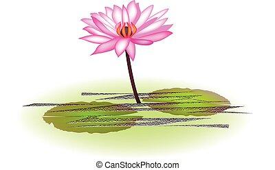 ロータス, ピンクの花, ロゴ