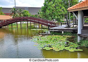 ロータス, 池