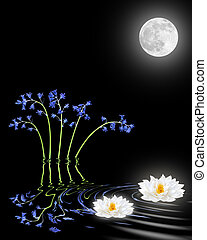 ロータス, 花, ユリ, ブルーベル