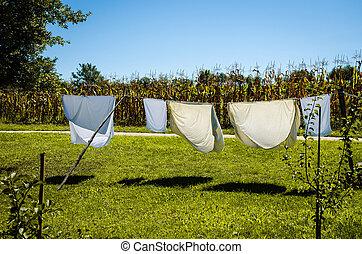 ロープ, 線, 乾燥, 衣服, ぬれた