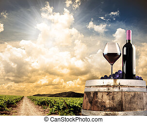 ワイン, 静かな 生命, に対して, ブドウ園