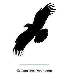 ワシのシルエット, 鳥, 動物, 黒