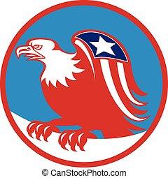 ワシ, とまる, アメリカの旗, レトロ, 円, 翼