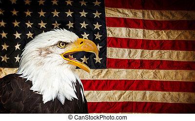 ワシ, アメリカ人, はげ, flag.