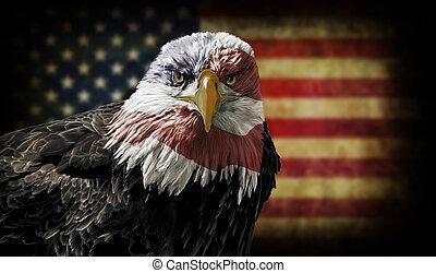 ワシ, 旗, はげ, グランジ, アメリカ人