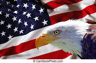 ワシ, 旗, はげ, 北アメリカ人