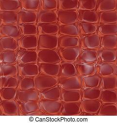 ワニ, ベクトル, texture., 皮膚