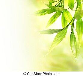 上に, ぼんやりさせられた, 緑の背景, 葉, 竹, 抽象的