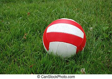 上に, スポーツ, 草, ボール