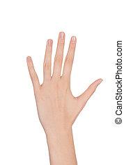 上に, 女, 白, 美しさ, 手